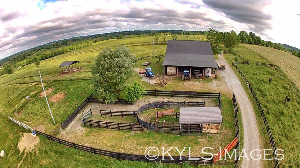 Kentucky Cattle Farm For Sale Incredible Views