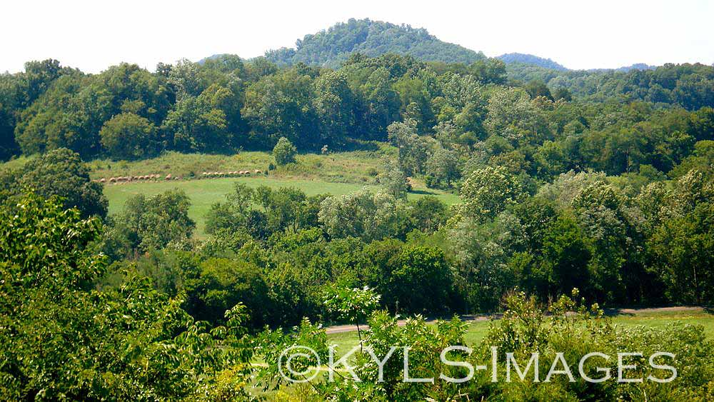 Danville, Kentucky, homes and land for sale, house 4 sale, housing, Realtor, real estate agent, mls, land, for sale, property