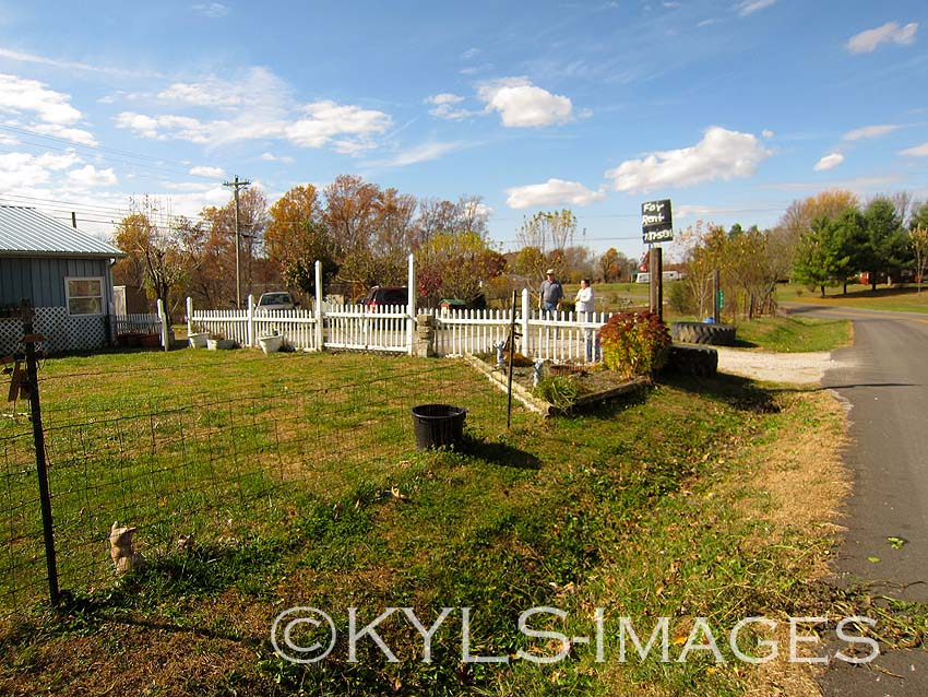 Income Property for sale, gentleman farm, sustainable, Liberty, KY homes for sale, house, land 4 sale Danville, Kentucky, Liberty farm, Casey County