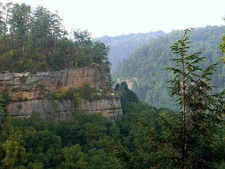 33 acres land vacation home gorgeous views owingsville for Daniel boone national forest cabins