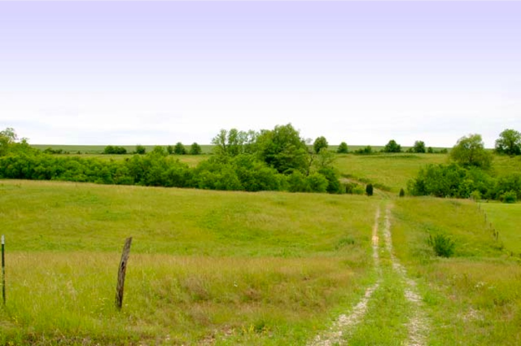 KY Land for sale, farms for sale lake property