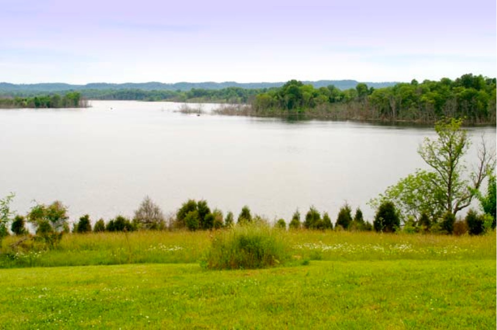 ky farms for sale kentucky horse farms