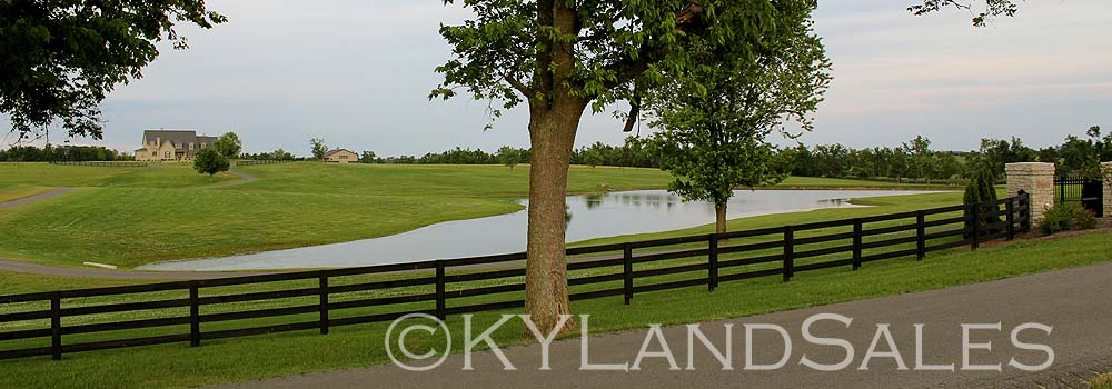 Stone home, 115 acres, Kentucky Horse farm land for sale