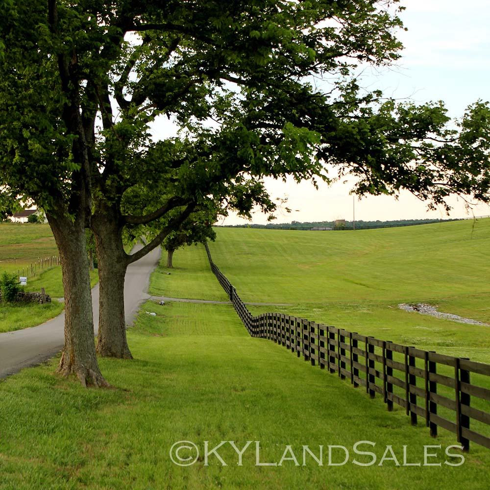 land sale the horse farm to buy kentucky