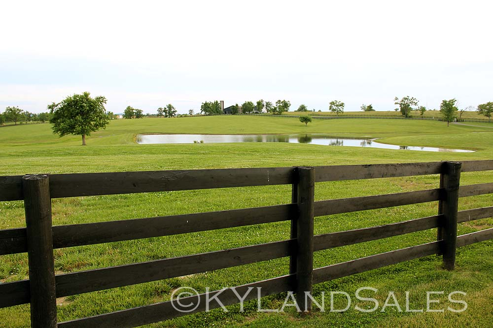 land sale horse farm the property to buy