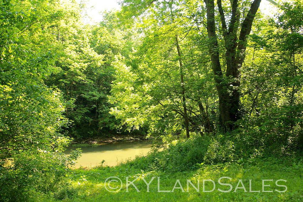 Harrodsburg, Kentucky, homes and land for sale, Horse Farm Land, Mercer County, Kentucky, Realtor, real estate agent, mls, land, for sale, property