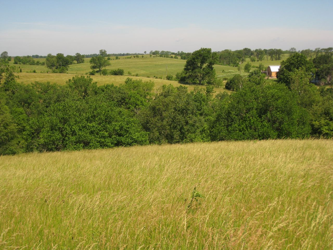 Rare Opportunity Large Tract For Horse Operation